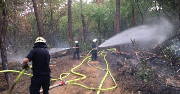 Waldbrand Straelen